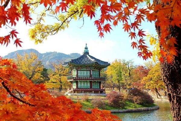 Kinh nghiệm du lịch Hàn Quốc tự túc