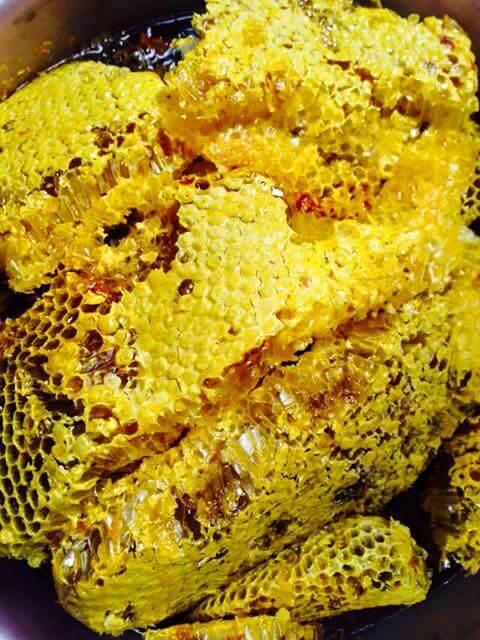 mật ong mù cang chải
