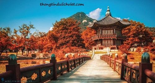 Du lịch hàn quốc nên đi tour hay tự túc